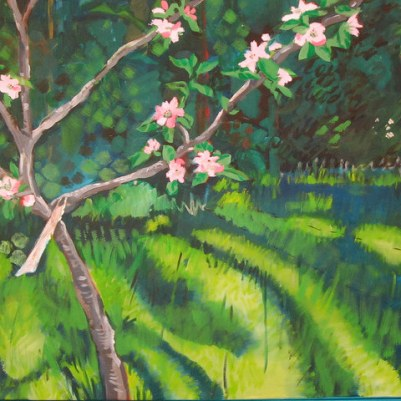 Miriam's painting of apple blossom on a young tree, 2011