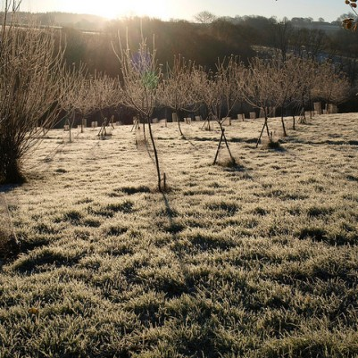 A frosty November morning, 2012