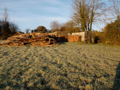 Firewood processing at the top of the orchard, November 2012
