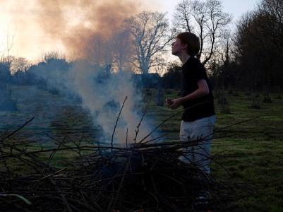 Burning diseased wood, March 2014